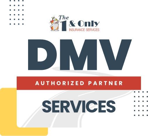 DMV Registration Services